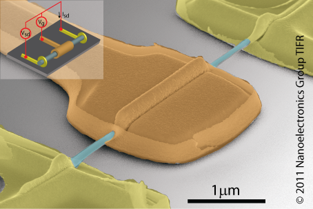 False coloured scanning electron microscope image of nanowire wrap-gate transistor